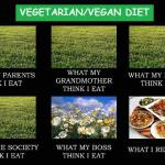 The Vegan Diet