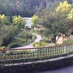 Club Mahindra Binsar Valley照片
