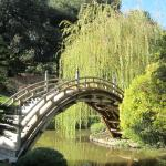 Photo de The Huntington Library, Art Collections and Botanical Gardens
