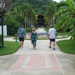 Walking from the beach towards the hotel - the walkway flanked by royal palms.