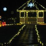 Christmas lights- forgive blurry I'm 63 and disabled