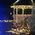 gazebo in garden lit up for Christmas