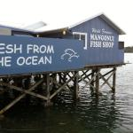 best fish and chips in New Zealand