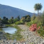 Te Anau Lodge Garden