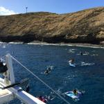 Prime conditions: Trilogy at Molokini