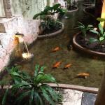 koi ponds throughout the hotel