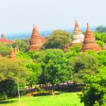 the normal landscape of Bagan