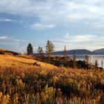 Yellowstone Lake Foto