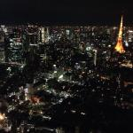 Night time from Tokyo City View