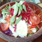 Beautiful salads, great recipes