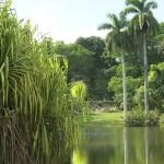 Foto de Fairchild Tropical Botanic Garden
