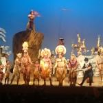 Photo de The Lion King at the Minskoff Theatre