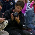 Close up experience at Kangaroo Island Birds Of Prey