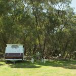 Photo de Western KI Caravan Park and Wildlife Reserve