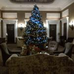 Christmas tree in one of the lobbies