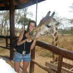 Photo of African Fund for Endangered Wildlife (Kenya) Ltd. - Giraffe Centre