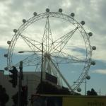 View of Melbourne Star from the tram