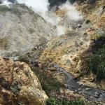 The springs between volcanic region and baths (note the black water!)