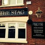 Foto The Stag