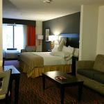 Foto de Holiday Inn Express Hotel & Suites Festus - South St. Louis