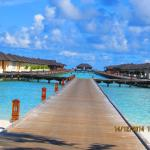 Photo de Paradise Island Resort & Spa