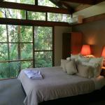 صورة فوتوغرافية لـ ‪Crystal Creek Rainforest Retreat‬