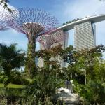 Garden by the Bay and Marina Sands Hotel