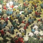 Pandas in The glass case