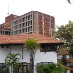 A refuge in the centre of Nairobi