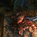 BBQ from the fish we caught today :-)