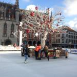 Ice skating at the Markt