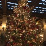 Christmas Holiday decorations in lobby area.