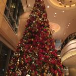 Foto de Four Seasons Hotel Shanghai