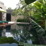 Marvelous One Bedroom Pool Villa - Pool