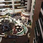 Embassy Suites Hotel Orlando - International Drive / Jamaican Court Foto