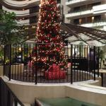 Foto van Embassy Suites Hotel Orlando - International Drive / Jamaican Court