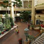 The Pualeilani Atrium Shops