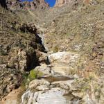 Seven Falls from trail