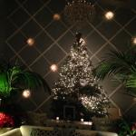 christmas time in the lobby