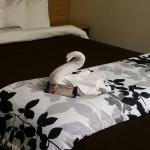Our swan and chocolate. .. very creative and nice welcoming touch.