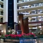 Bilde fra Wyndham Dallas Suites - Park Central