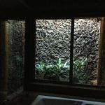 The outdoor lava rock shower!