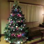 Christmas Tree in Public Sitting/Breakfast Room - Larkspur Landing, Folsom, Ca
