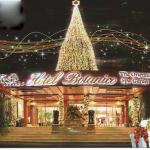 CHRISTMAS LIGHTS AT HOTEL BOTANICO 2014