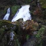 Triberger  Waterfall Foto