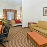 KIng Suite with sofa sleeper with refrigerator & microwave