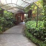 Pathway to the dining room