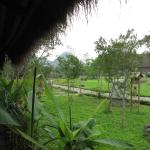 Photo of Cuc Phuong Resort & Spa