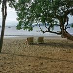 The beach has chairs and towels and a couple of trees
