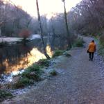Walk to Fingles bridge